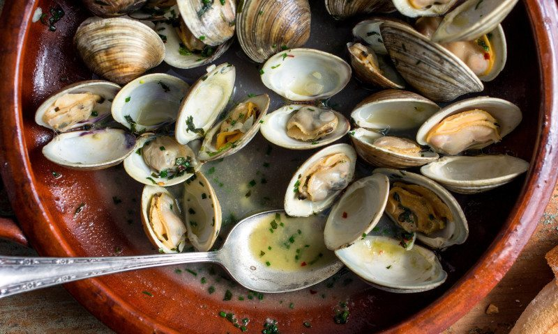 Clams with mustard sauce