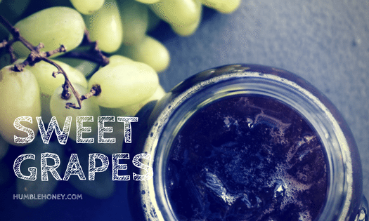 Sweet Grapes Greek Desert