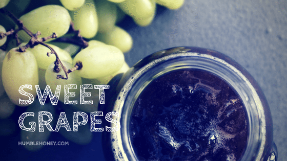 Sweet Grapes Greek Desert
